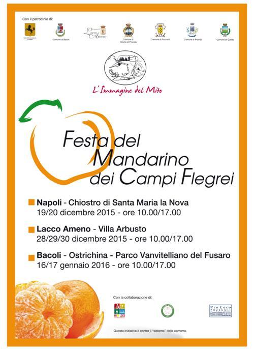 Festa-del-Mandarino-dei-Campi-Flegrei-2016