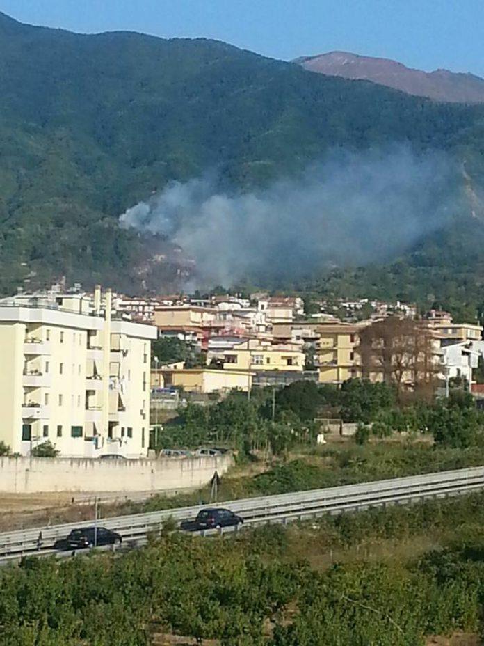 grave_incendio_sul_vesuviano_zona_carcavone_a_pollena___trocchia.2
