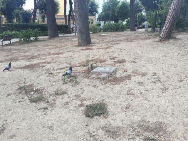 Parco_Mascagna