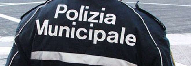 576955_20140906_polizia-municipale-3_jpg_pagespeed_ce_s1gW8kbX5-