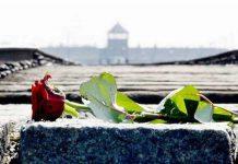 giornata_della_memoria_rosa_doc-2