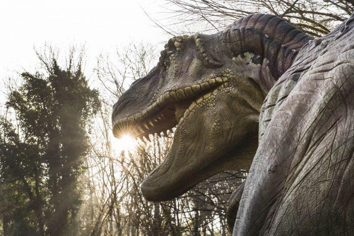 mostra_dinosauri_a_napoli_3