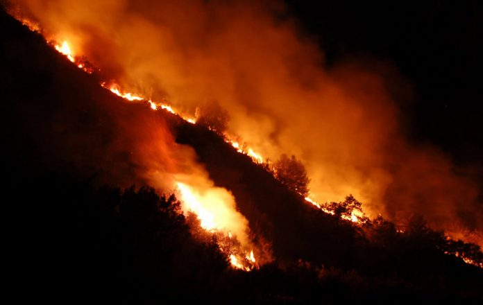 Incendio-2007-luglio-65WE
