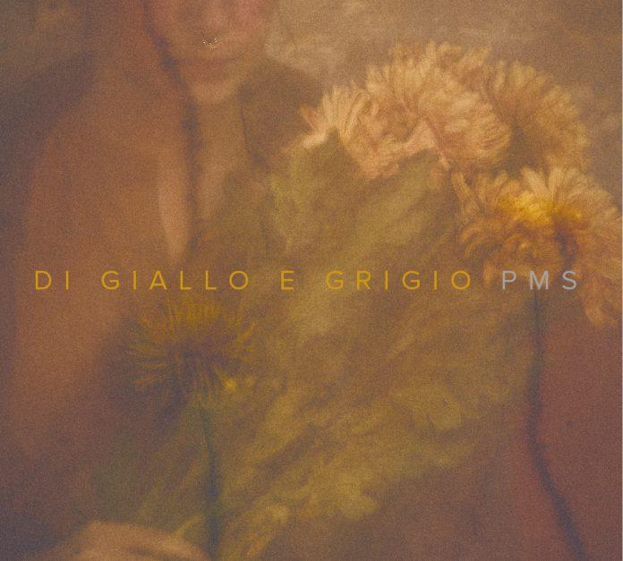 PMS_Di_giallo_e_grigio_cover