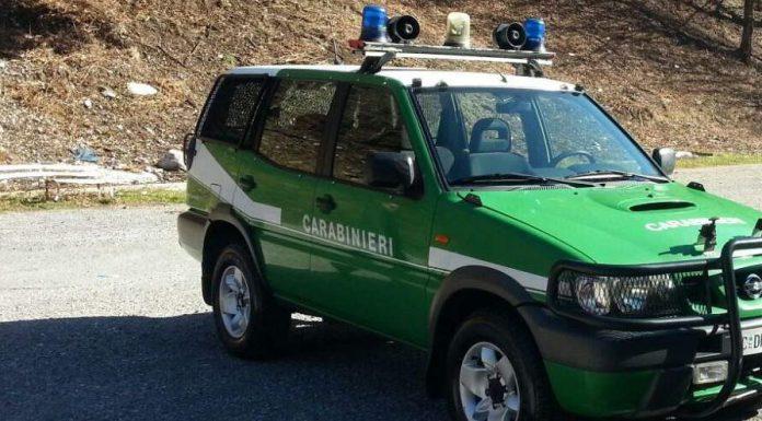 CARABINIERI-FORESTALI-e1510078165766