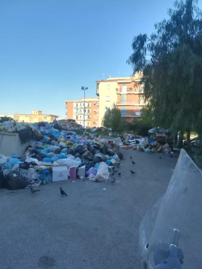 rifiuti torre del greco